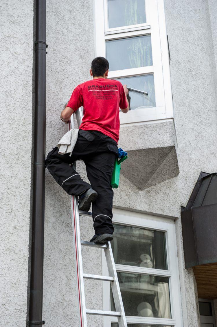Glasreinigung Leiter